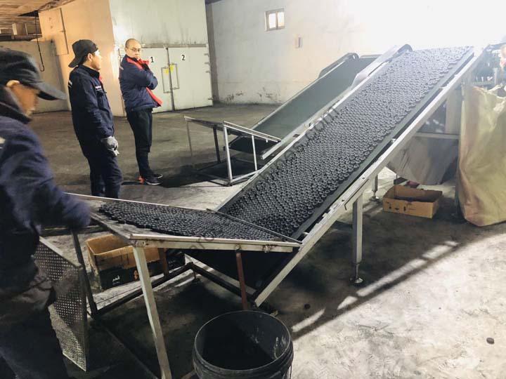 charcoal briquettes sorting machine