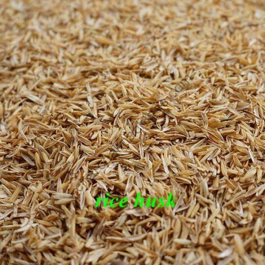 rice husk for briquetting